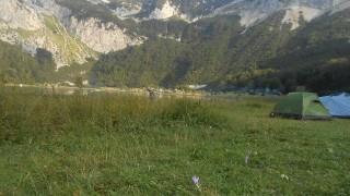 planinaribosna