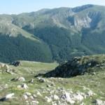 galicica1