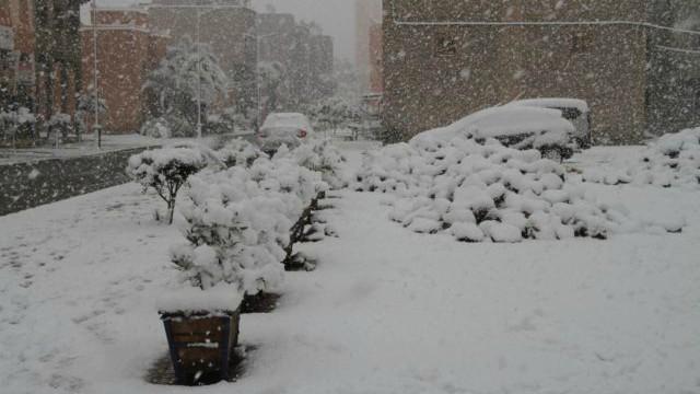 snegvomaroko