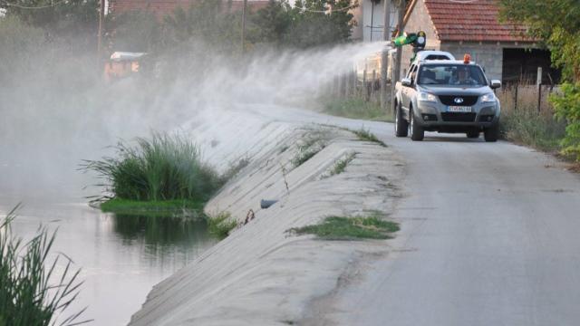 Општина Охрид ќе прска против комарци